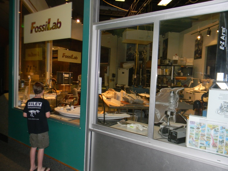 Smithsonian Fossil Lab